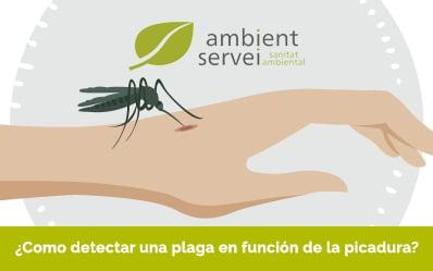 Detectar una plaga en función de la picada