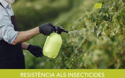 Resistència als insecticides